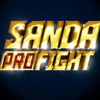 Sanda Profight