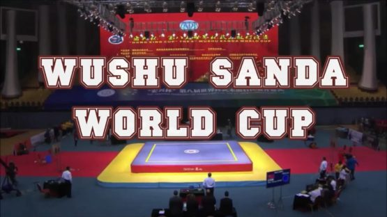 Regarder Wushu Sanda world cup in China