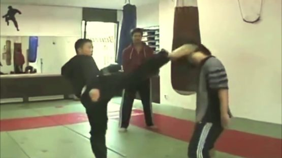 Regarder Donnie Yen Oldschool training compilation